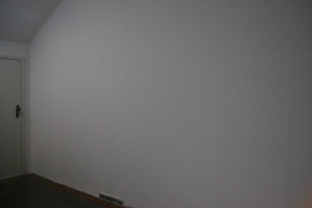 2013-07-14 paredes crescem 2 (n maurer)